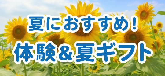 夏におすすめ!千田硝子の体験&夏ギフト